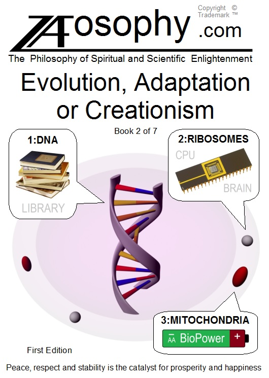 Jacket Front, Evolution, Adaptation or Creationism
